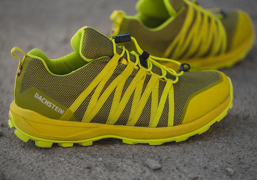Мъжки спортно-туристически обувки Dachstein Delta Pace GTX Mud Green