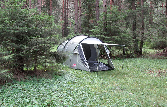палатка в гората