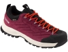 Dachstein SF-21 GTX WMN Hiking Shoes Cranberry 2021